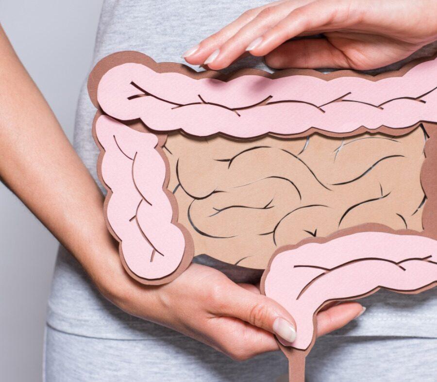 Queda de imunidade pode revelar problemas no intestino